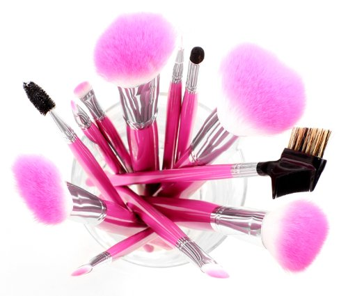 SHANY Pro Vegan Mineral Brush Set with Pink Clutch review