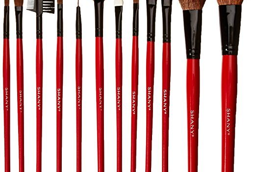 SHANY Cosmetic 12 Piece Brush Set With a Red Pouch